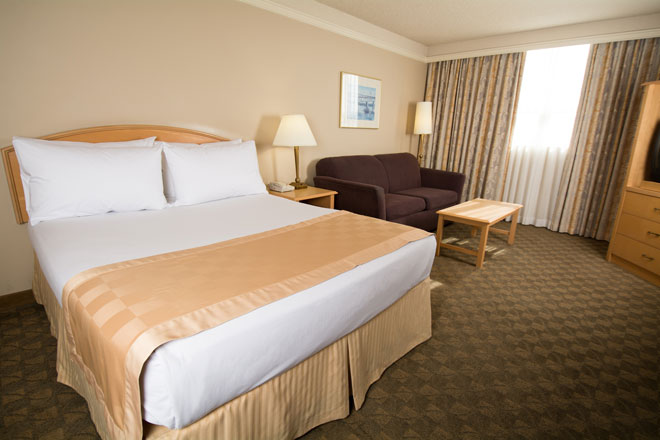 one queen room edmonton hotel